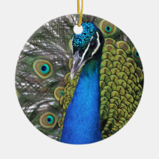 Bright Blue and Green Peacock w Feathers Opened Ceramic Ornament