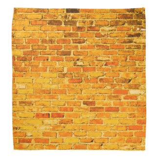 Bright Brick Bandanna