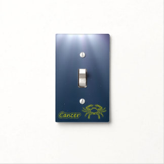 Bright Cancer Light Switch Cover