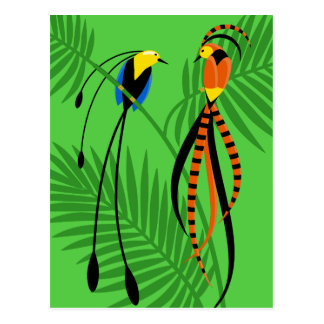 Bright Colorful Birds of Paradise Postcard
