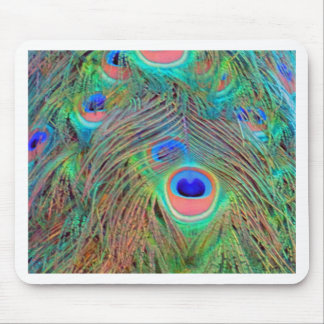 Bright Colorful Peacock Feathers Mouse Pad