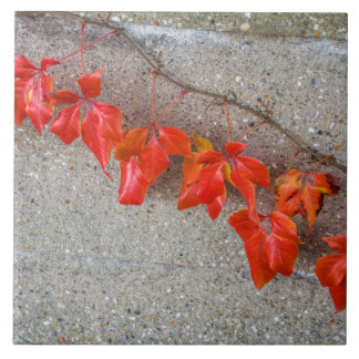 Bright coloured autumn leaves ceramic tile