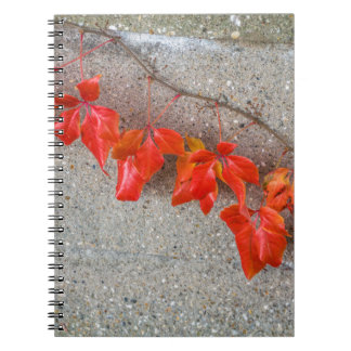 Bright coloured autumn leaves notebook