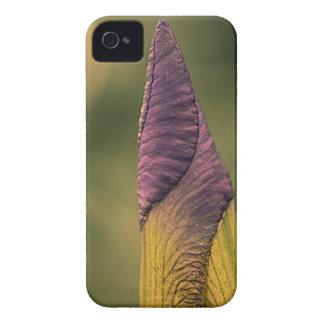 bright flower bud Case-Mate iPhone 4 case