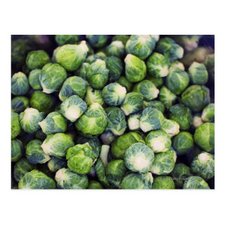 Bright Green Fresh Brussels Sprouts Postcard