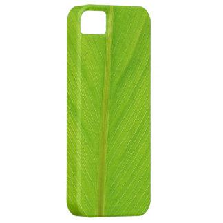 bright green fresh leaf iPhone 5 cover