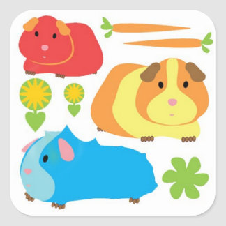 Bright Guinea Pigs Square Sticker