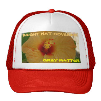 BRIGHT HAT COVERING GREY MATTER