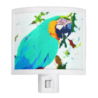 Bright Macaw Parrot Portrait Nite Lights
