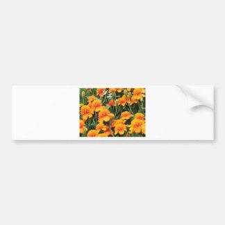 bright orange flowers bumper sticker
