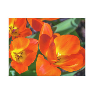 Bright orange flowers canvas print