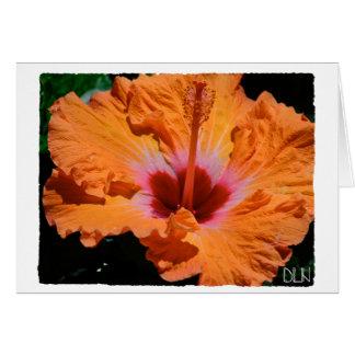 Bright Orange Hibiscus Flower/Floral  Art/ Card