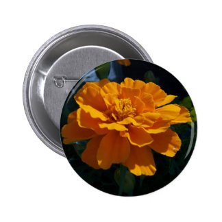 Bright Orange Marigold 2 Inch Round Button