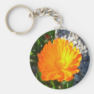 Bright Orange Marigold In Bright Sunlight Basic Round Button Keychain