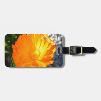 Bright Orange Marigold In Bright Sunlight Luggage Tag