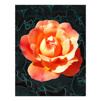 Bright orange rose letterhead