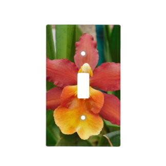 Bright Orchid  Light Switch Cover