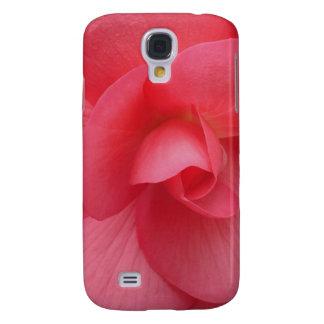 Bright Pink Begonia Gift Range