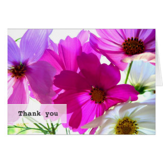 Bright Pink Cosmos Flowers Thank You Card