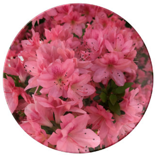 Bright pink flowering bush in the spring plate
