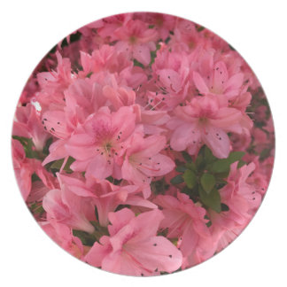 Bright pink flowering bush plate