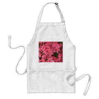Bright pink flowering bush standard apron
