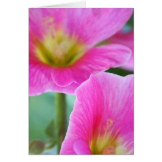 Bright Pink Hollyhocks Card