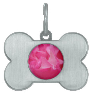 Bright Pink Rose Petals Pet Tag
