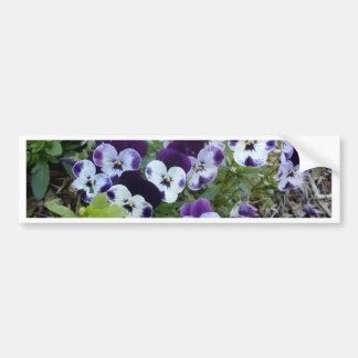 Bright_Purple_And_White_Pansies, _ Autocollant De Voiture