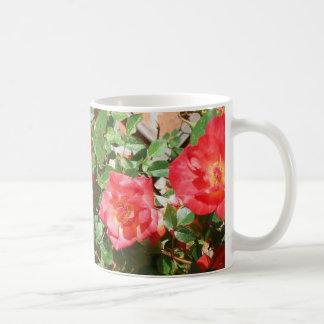 Bright Red Bush Roses Photograph Classic White Coffee Mug