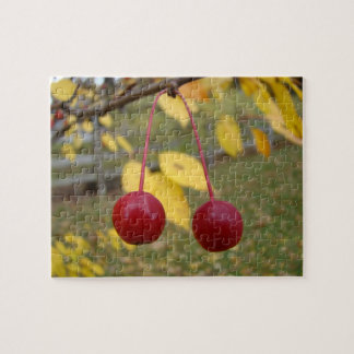 Bright Red Crab Apples Jigsaw Puzzle