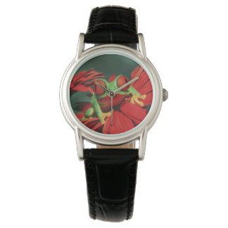Bright Red-Eyed Frog Wristwatches