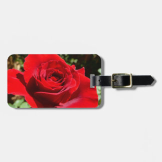 Bright Red Rose Flower Beautiful Floral Bag Tag
