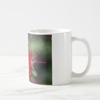 Bright Red Spring Blooming Azaleas Pentanthera Coffee Mug