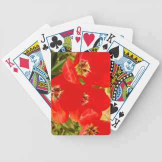 Bright Red Tulips Bicycle Playing Cards