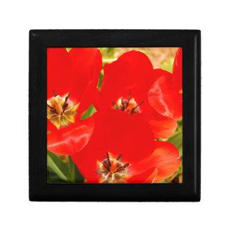 Bright Red Tulips Gift Box