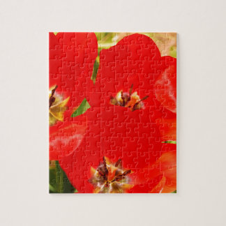 Bright Red Tulips Jigsaw Puzzle
