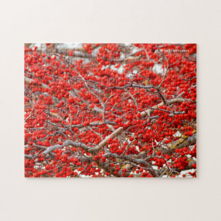 Bright Red Winterberries Holly Tree Berries Jigsaw Puzzle