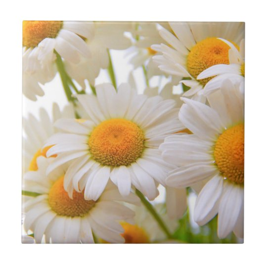 Bright Summer Daisies Tile
