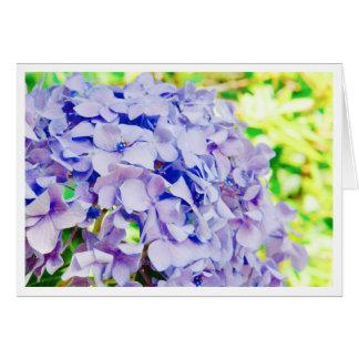 Bright Summer Hydrangea Card