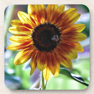 Bright Sunflower - Floral Photography Drink Coaster