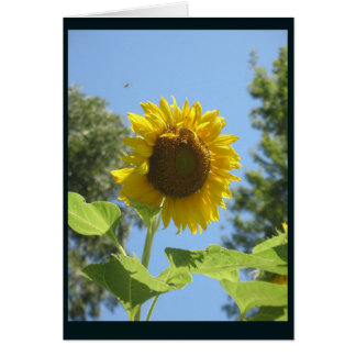 Bright Sunflower Greeting Card, Blank Card