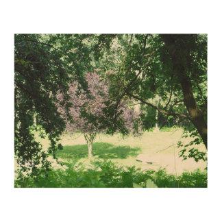Bright Sunshine Trees Wood Print
