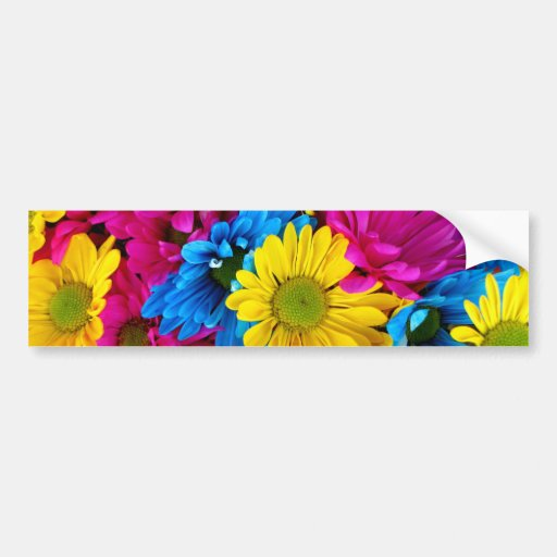 Bright Teal Hot Pink Yellow Daisies Flowers Gifts Bumper Sticker