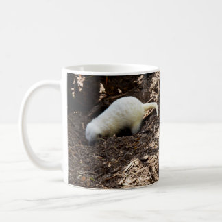 Bright_White_Meerkat,_White_Coffee_Mug Coffee Mug