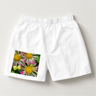 Bright yellow and pink flowers boxers