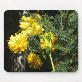 Bright Yellow Flowers and Pine Branch Mouse Pad