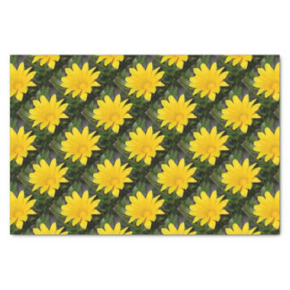 Bright Yellow Gazania Flower Tissue Paper