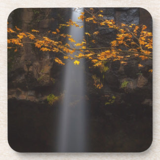 Brighten Up the Place Drink Coaster