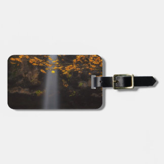 Brighten Up the Place Luggage Tag